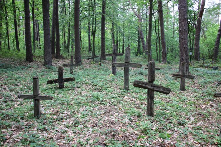 Cmentarz choleryczny w Hrebennem