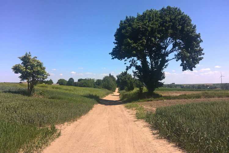 Na rowerowym szlaku