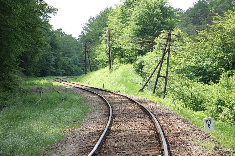 Roztoczańska linia kolejowa latem
