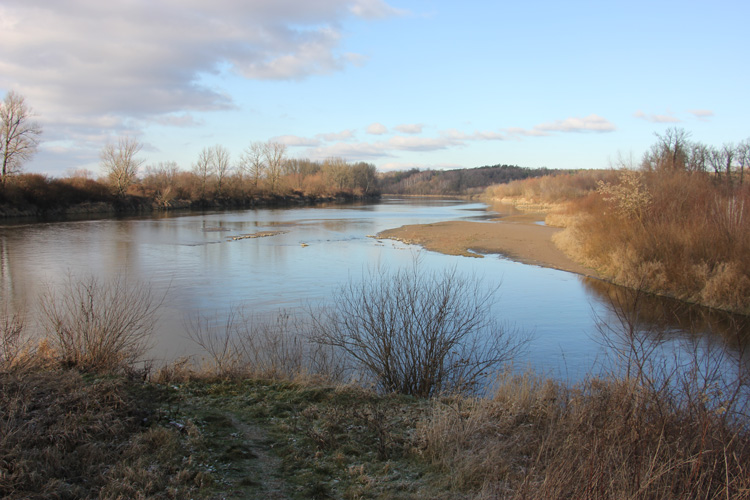 Rzeka Tanew jesienią