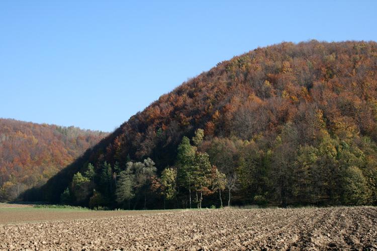 Jesień na Roztoczu Zachodnim