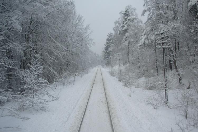 Roztoczańska kolej zimą