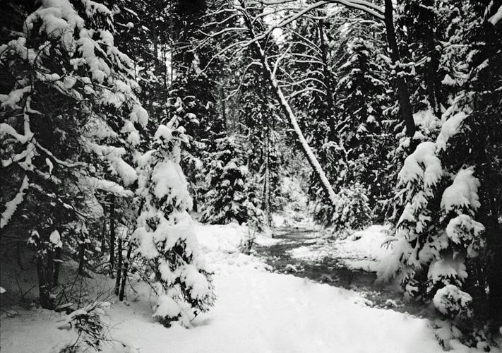 Szlak szumów zimą 1993 r.