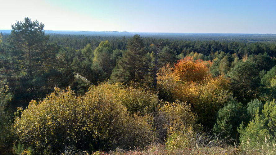 Wzgórze Młynarka