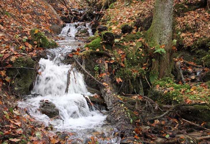 Roztoczańskie wodospady